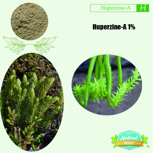 Huperzine-A 1% (Natural) 1kg/bag