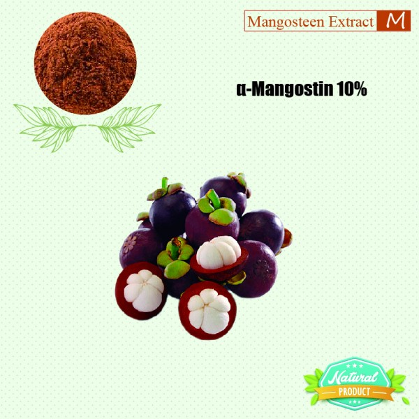 Mangosteen Extract alpha-Mangostin 10% 25kg/drum