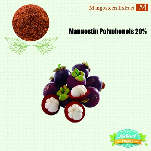 Mangosteen Extract Polyphenols 20%  25kg/drum