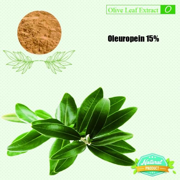 Olive Leaf Extract Oleuropein 15%  25kg/drum