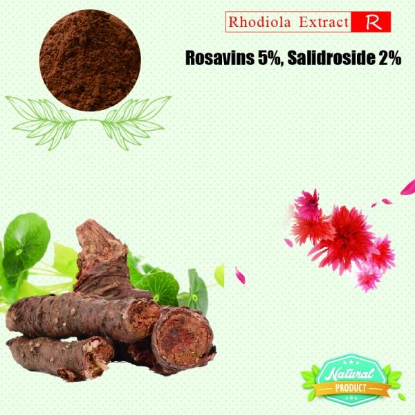 Rhodiola Rosea Extract Rosavins, Salidroside 5%, 2% 25kg/drum