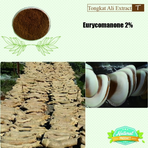 Tongkat Ali Extract Eurycomanone 2%  25kg/drum